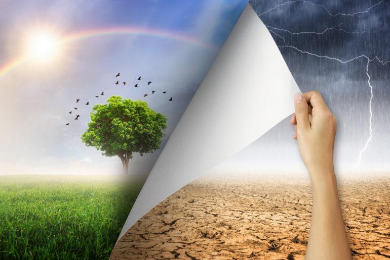 Fluchtplan: Dein Plan B für die Klimakrise. Ein Essay. Analyse und Handlungsoptionen.